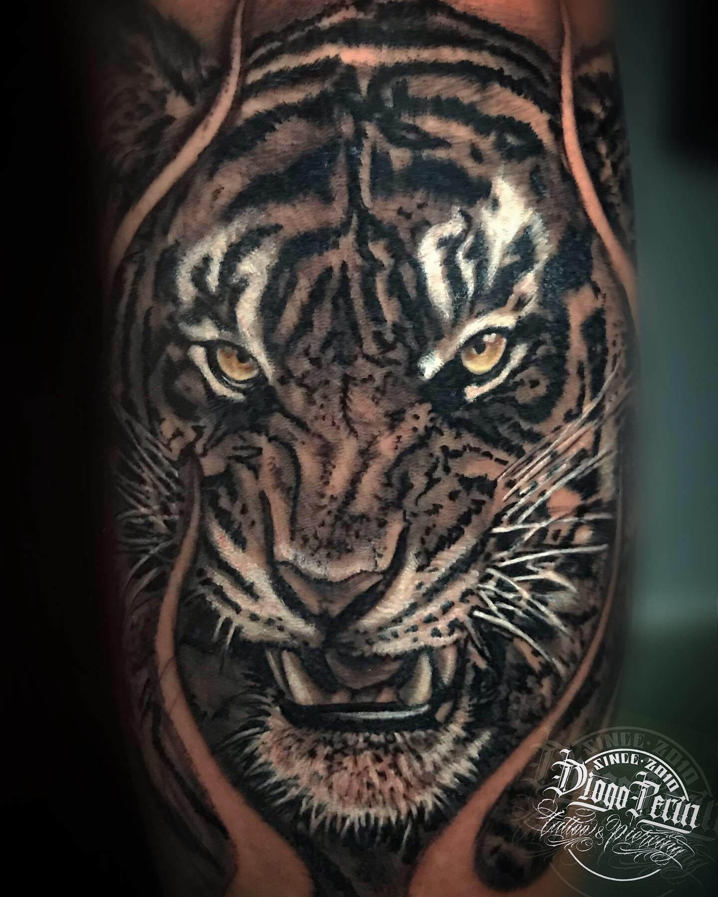 tatuaje tigre realismo b&n black and grey alicante tattoo