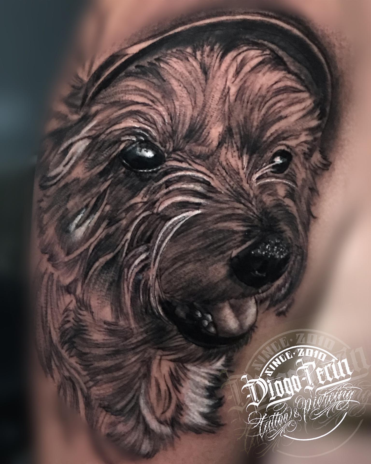 yorkshire, tattoo, realistic, realismo, perro, dog, portrait, alicante, santa pola, tattoo, tatuajes, tattoos